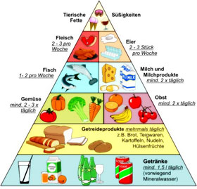 Nahrungsmittelpyramide, Ernährung in der Schwangerschaft