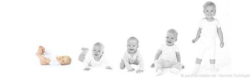 baby_entwicklung_1